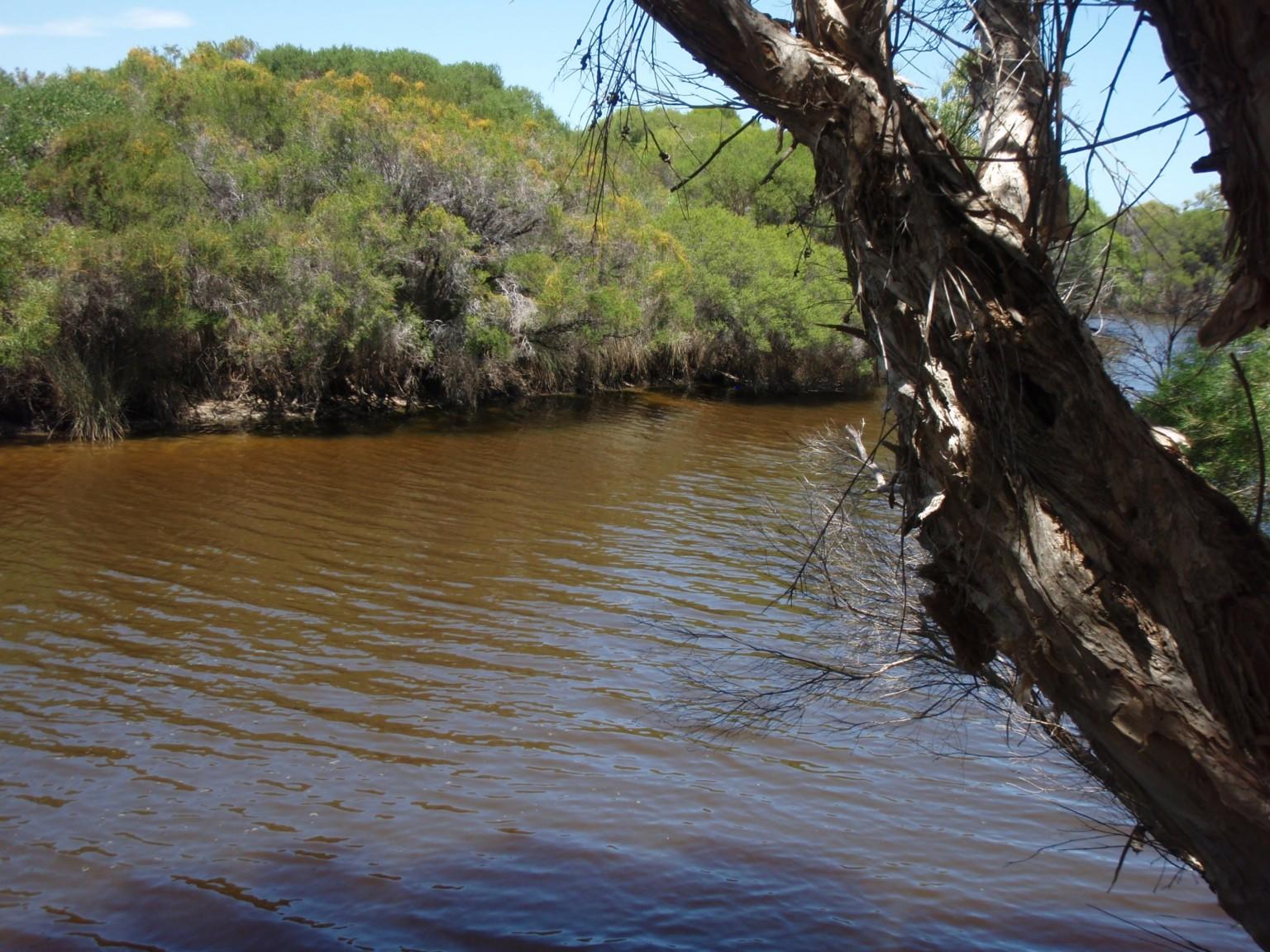Hill River Fishing