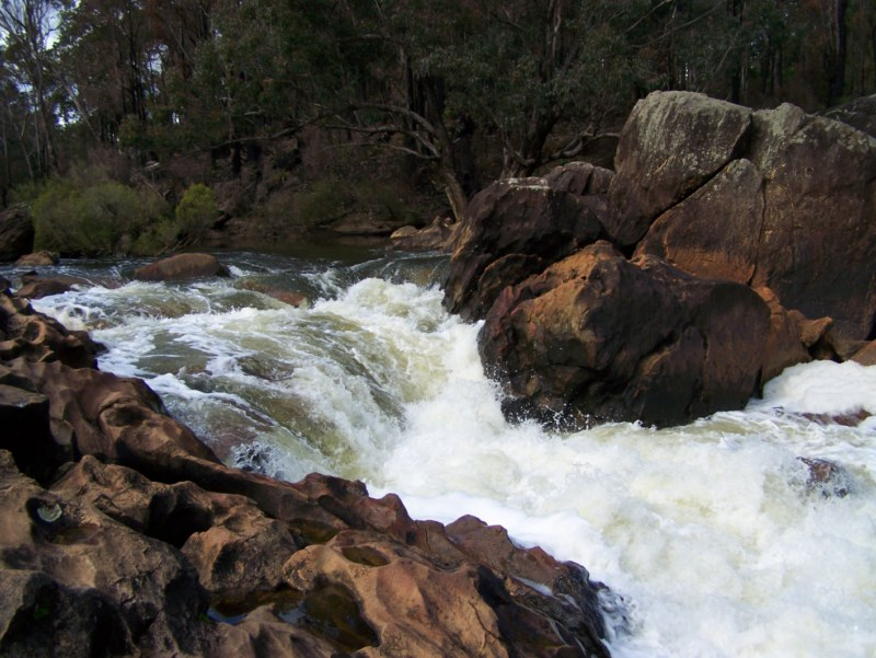 Dwellingup Rapids