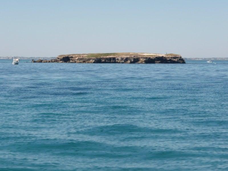 Fishing at Carnac Island