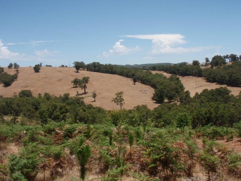 WA Farmland