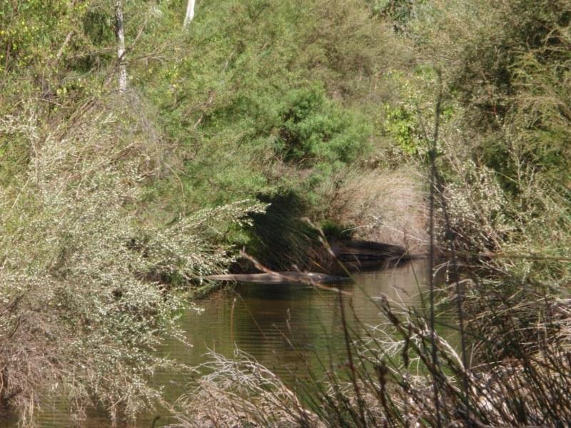 Brunswick Creek Crossing