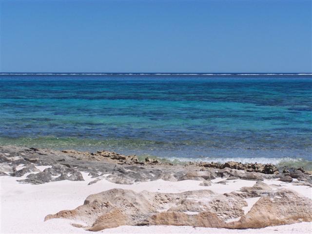 Coral Bay Diving
