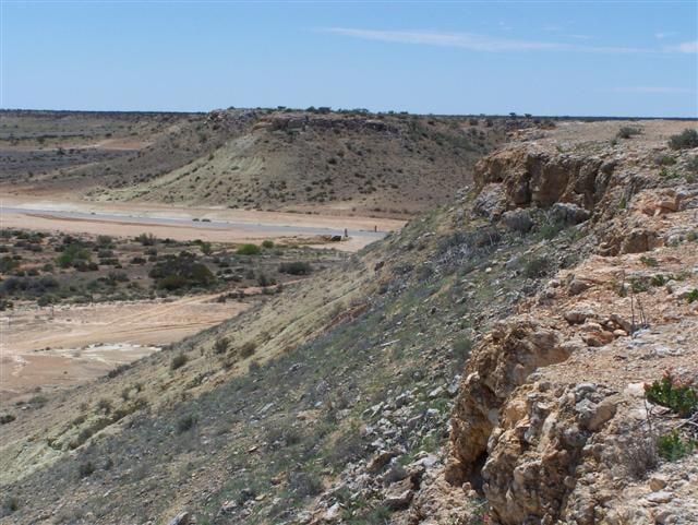 Western Australian Barraness