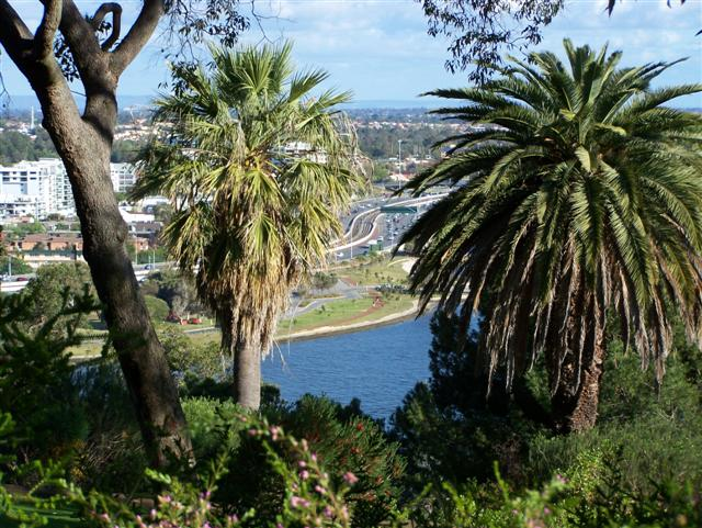 Kings Park View