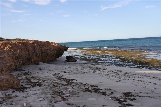 Coral Bay Reef