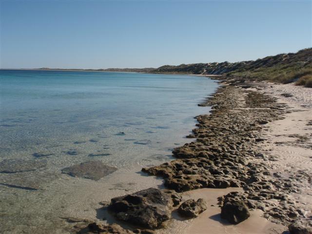 Coral Bay Beach Walk