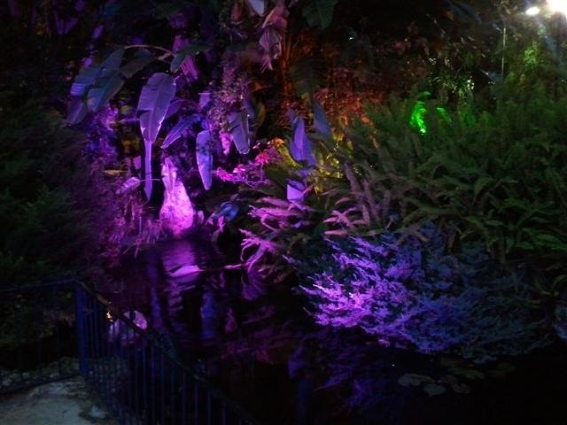 Botanic Golf lighting