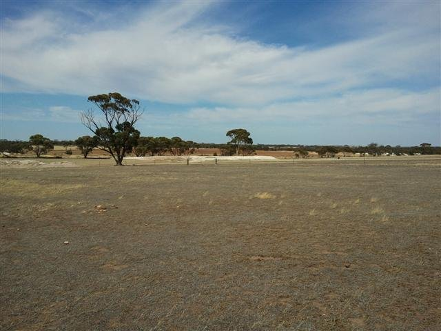 Barren farm land in WA