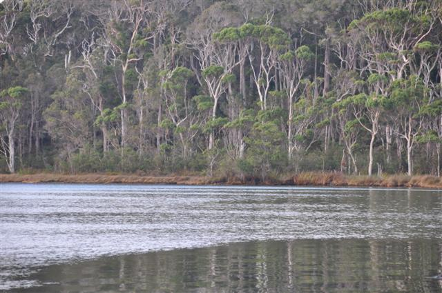 The perfect fishing location in Walpole Inlet