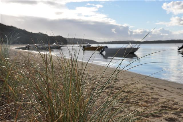 Boats at Coalmine Caravan Park Beach