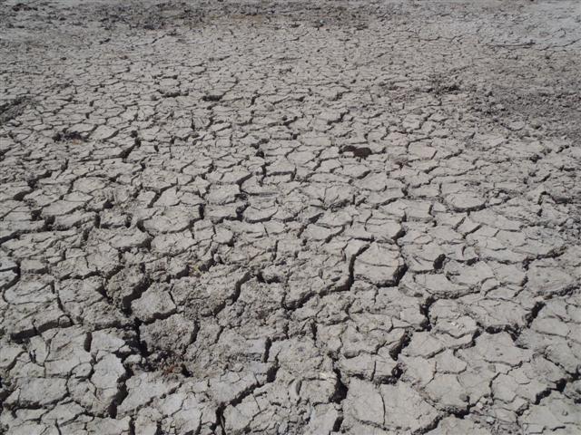 Dry dams in WA