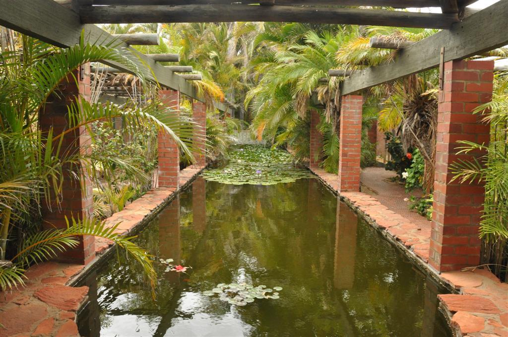 A Pond at the Kalbarri Bird Park