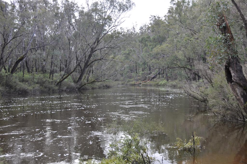 A Very Fast Flowing Murray River