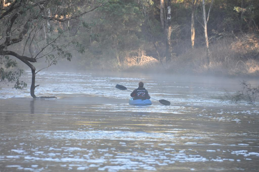 An Early Morning Kayak at Dwellingup