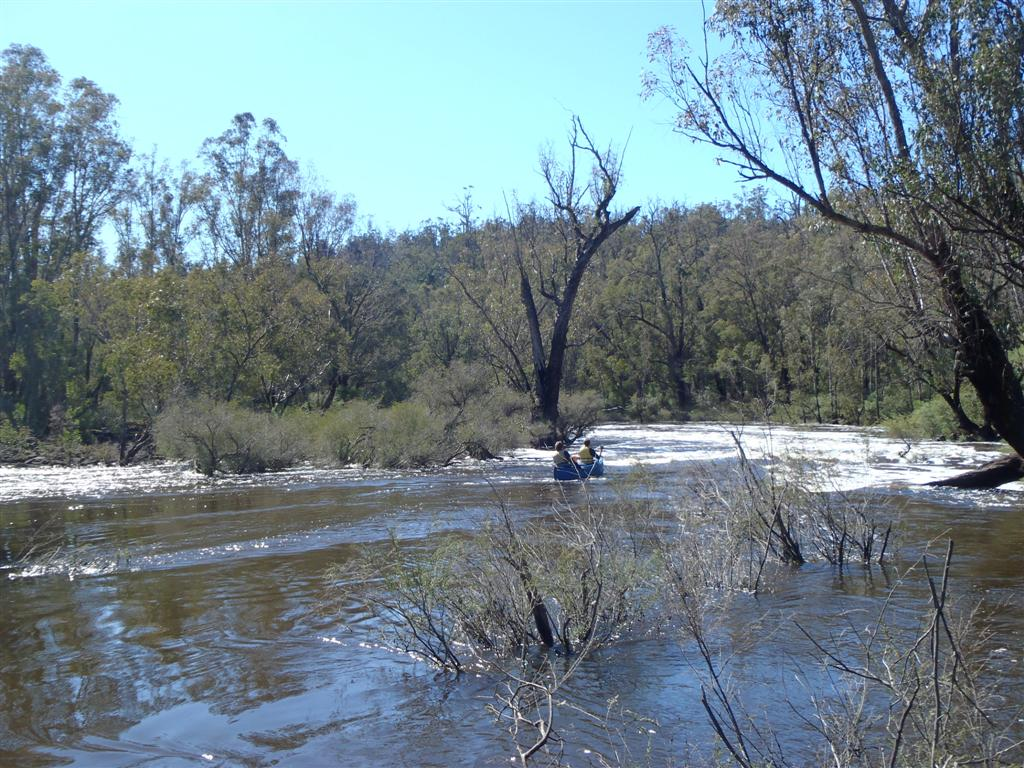 Canoeing Down Rapids at Dwellingup