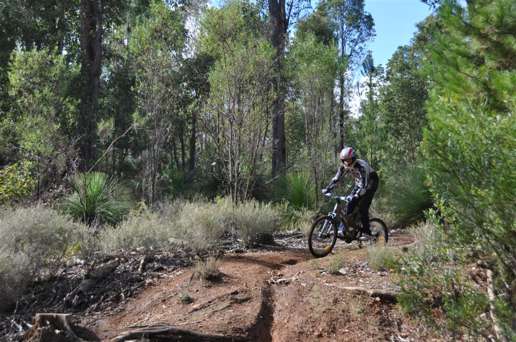 Downhill Mountain Biking in Dwellingup