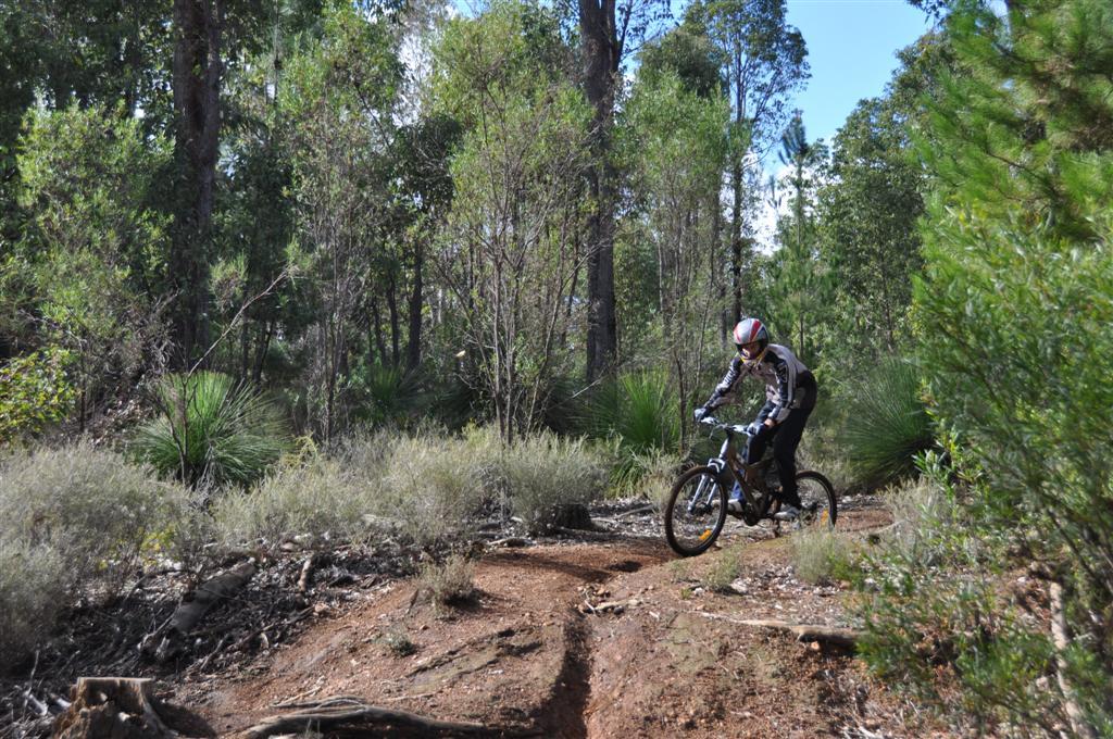 Downhill Mountain Biking in Dwellingup