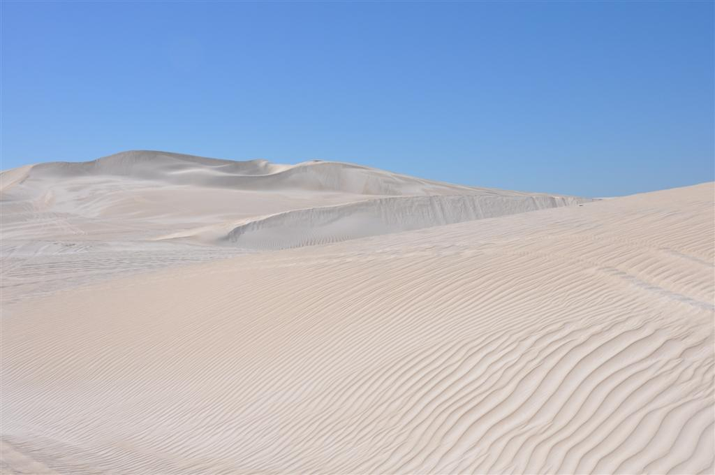 Dunes That go on and On