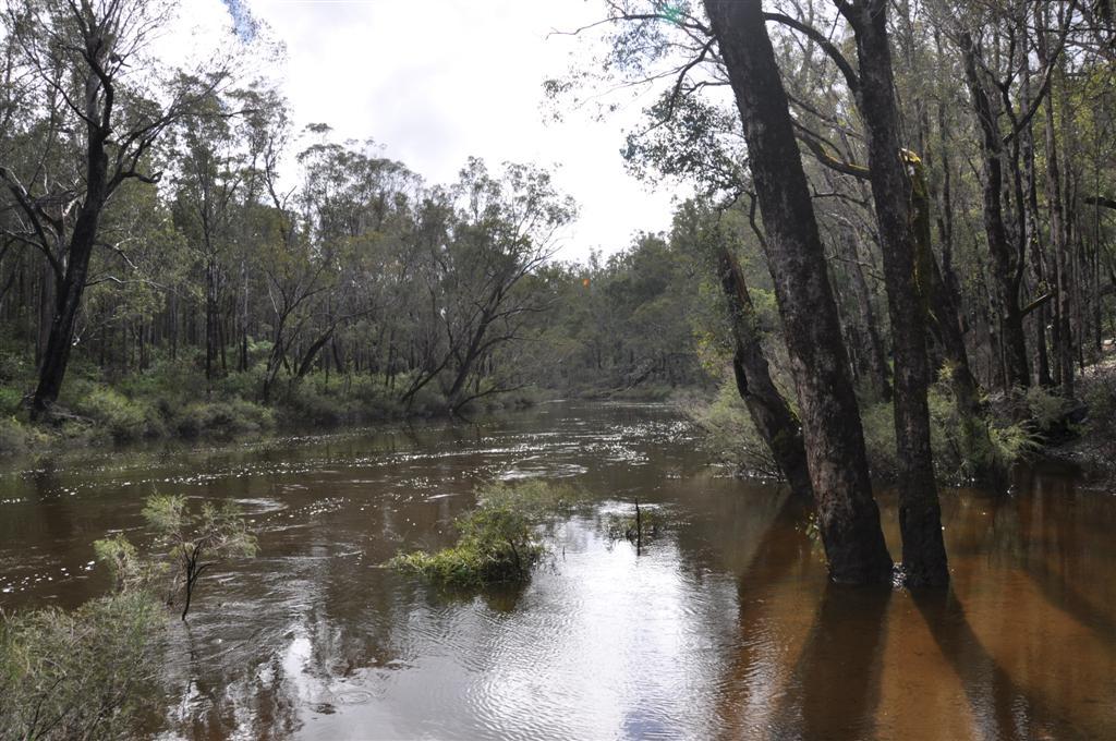 Enjoying the Murray River at Dwellingup