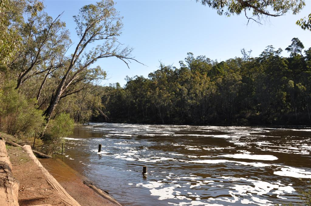 Island Pools in Dwellingup at Very High River Level