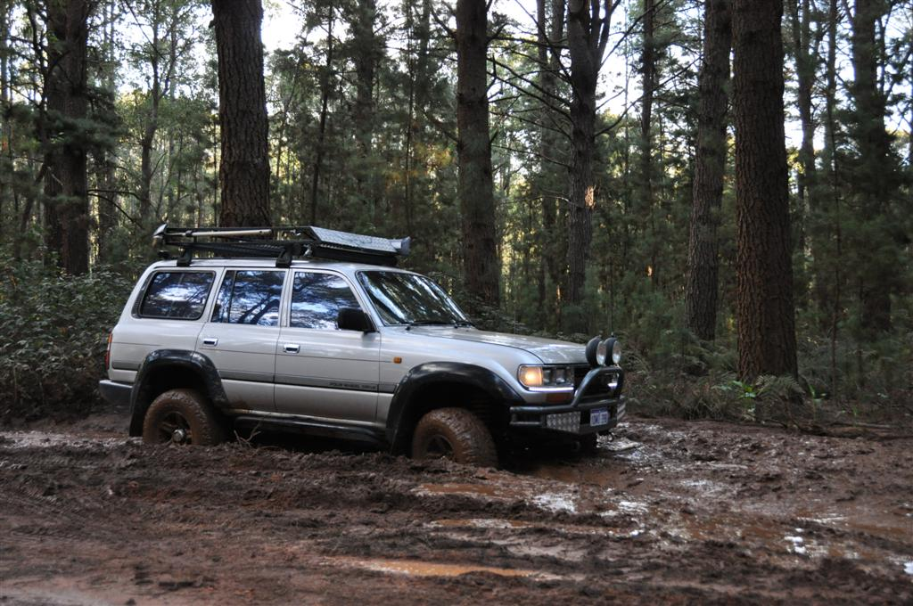 Playing in the Mud Near Dwellingup