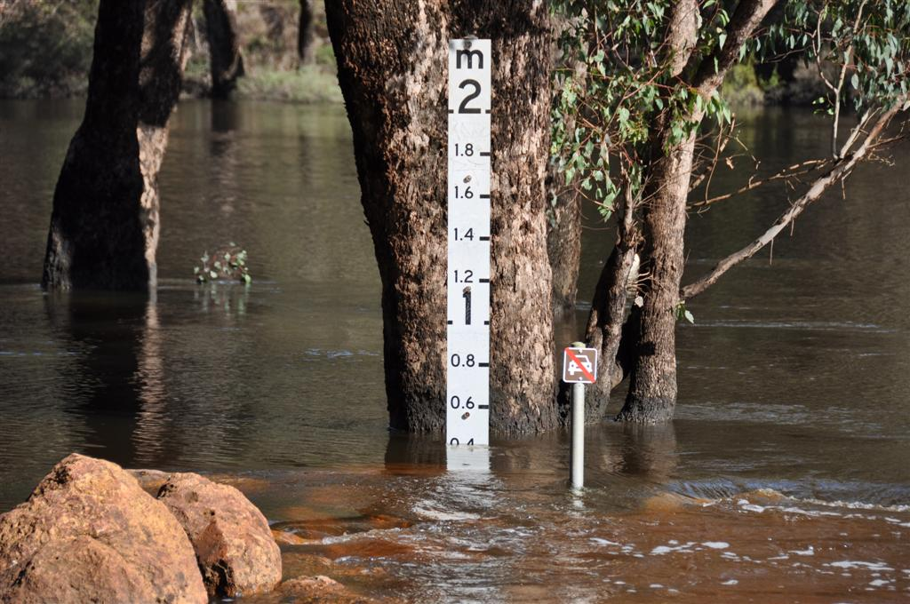 The Murray River after a Lot of Rain