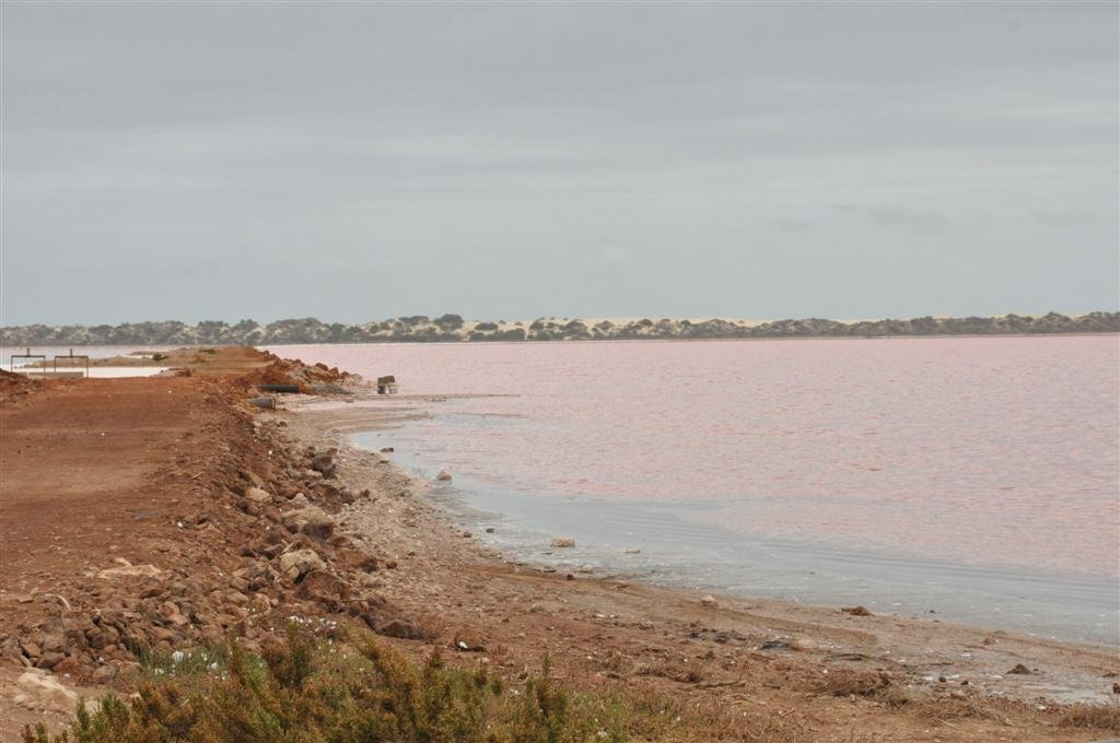 The Pink Lake on the Way to Kalbarri