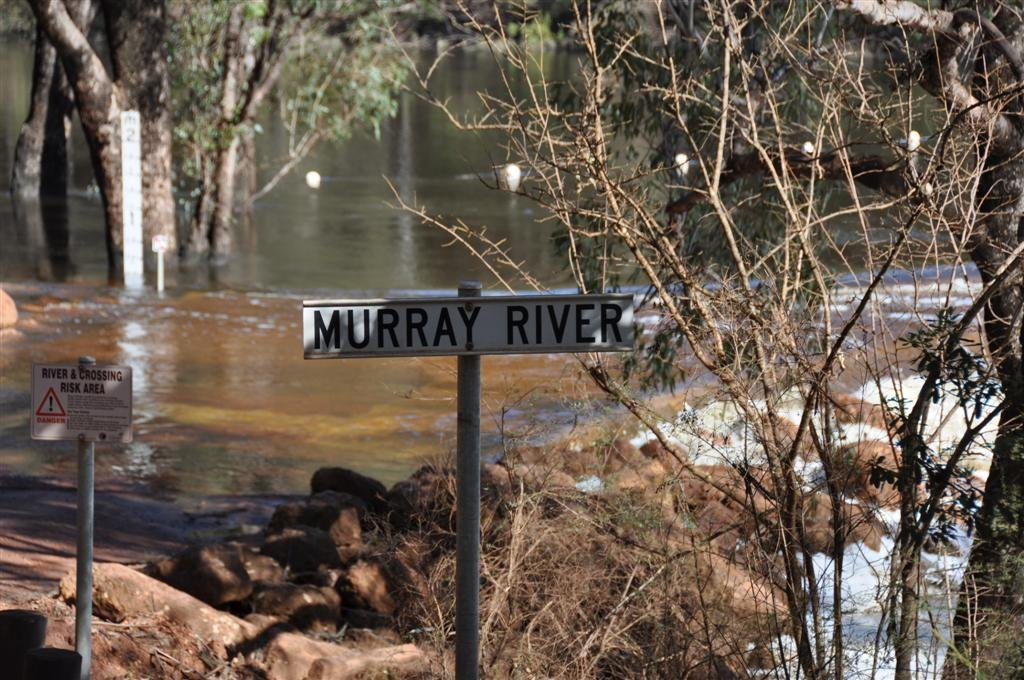 The River That Runs Through Dwellingup