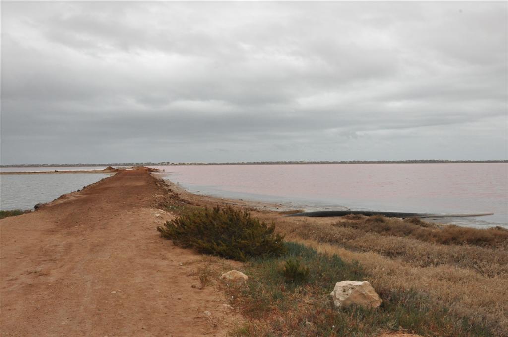 Wa's Pink Lake