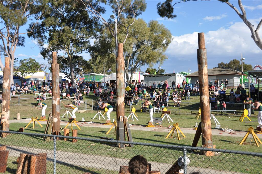 Wood Chopping at the Royal Show
