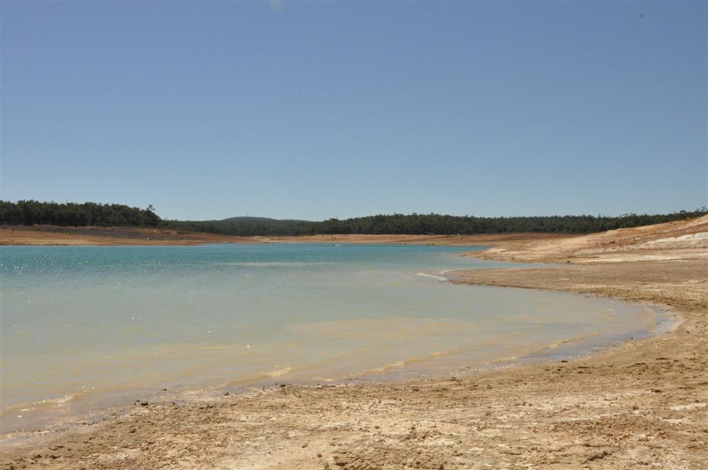 Logue Brook Dam swimming