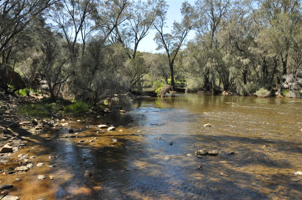 Walyunga National Park water
