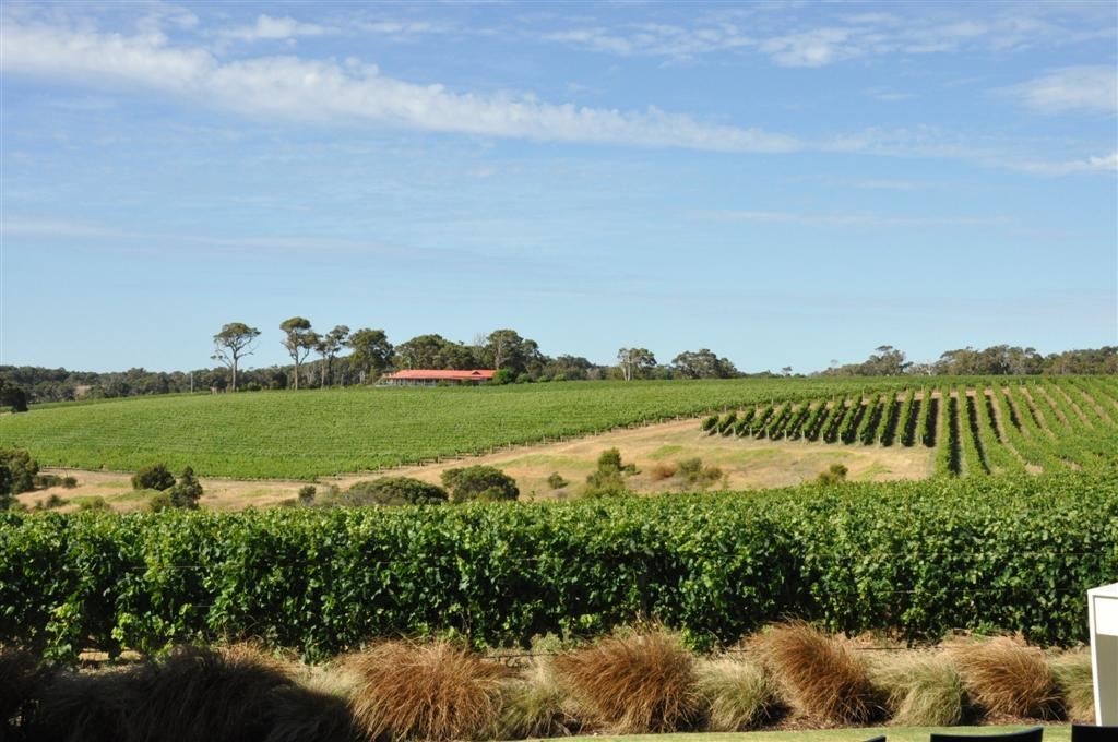 WA's southwest vineyards