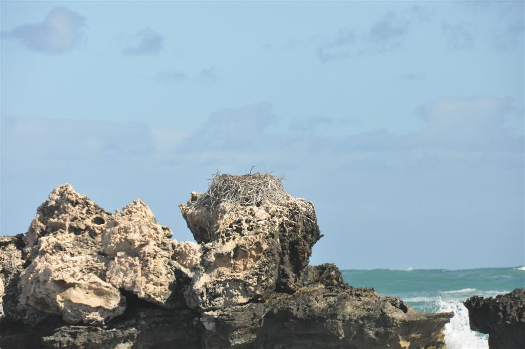 Point Peron rocks