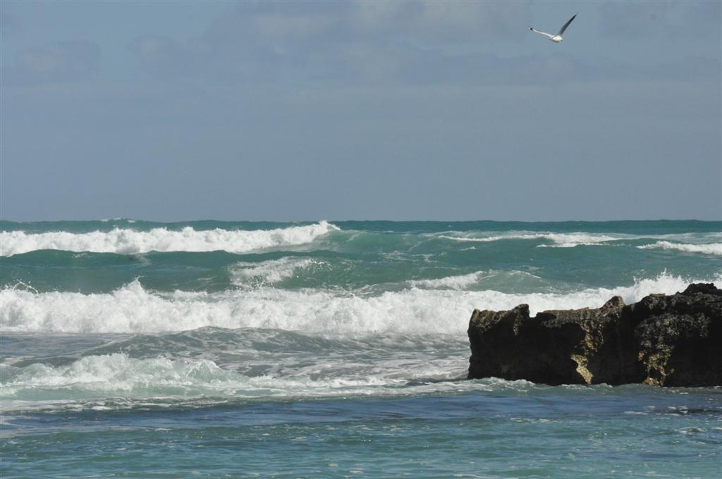 WA Beaches