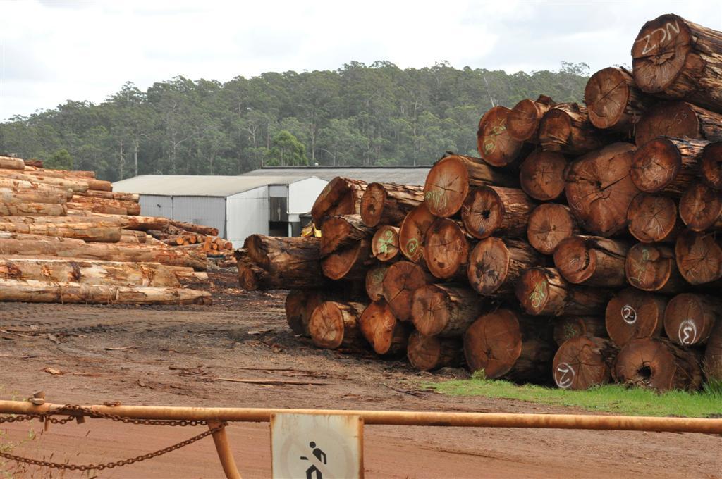 Pemberton logging still going
