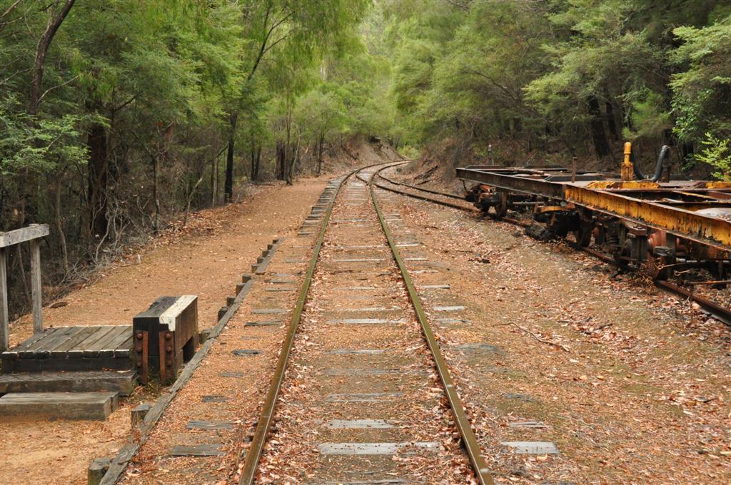 Pemberton Train Ride
