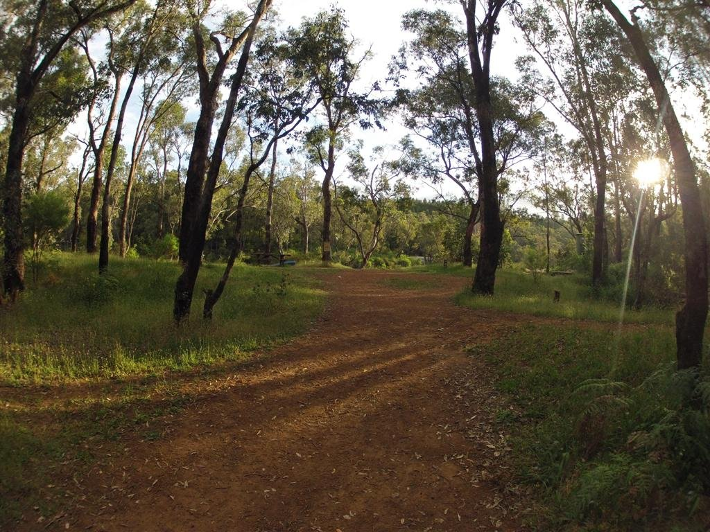 Dwellingup Camping choices