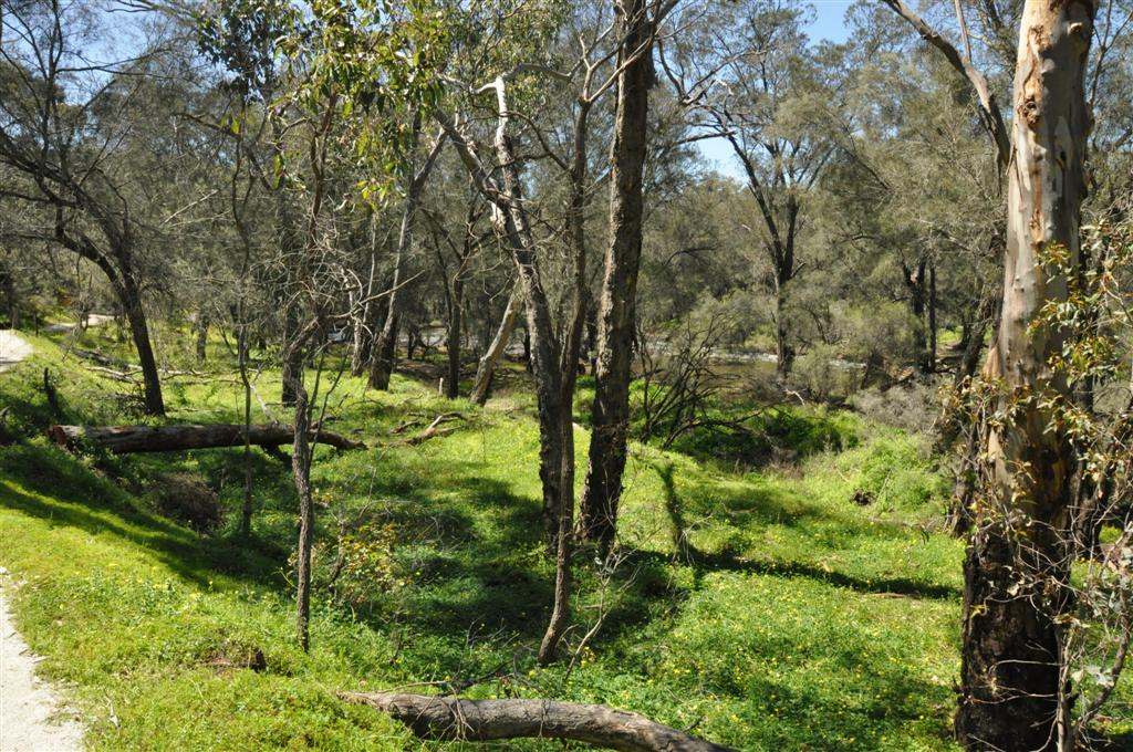 National Parks close to Perth