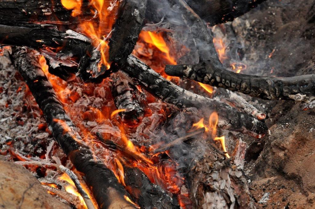 A Toasty Fire