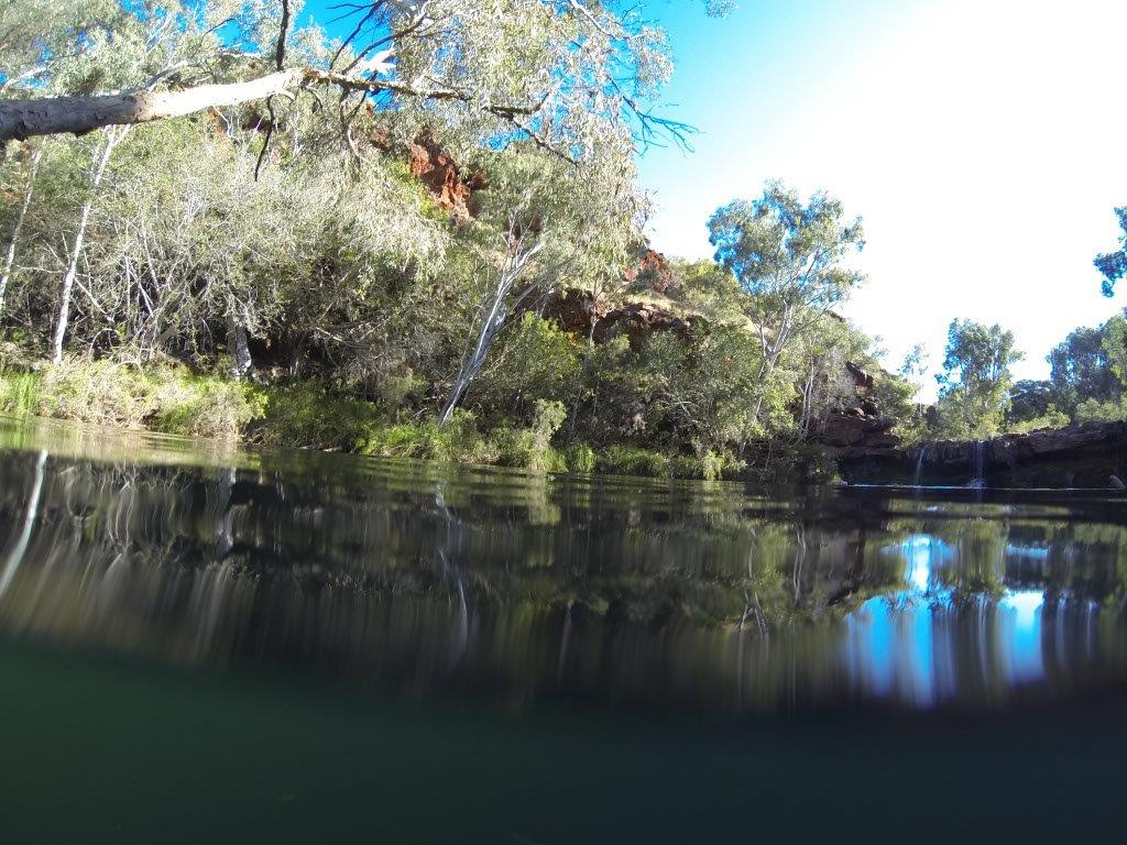 Fern Pool in Karijini