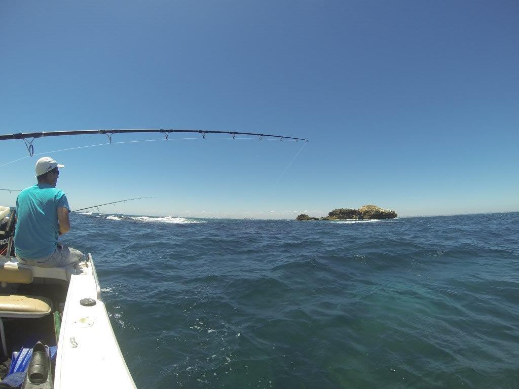 Fishing at Stragglers