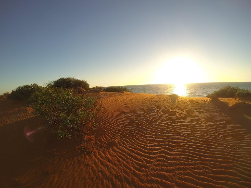 Shark Bay Sunset