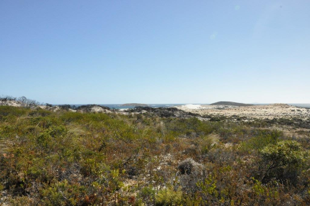 The View from Cape Arid