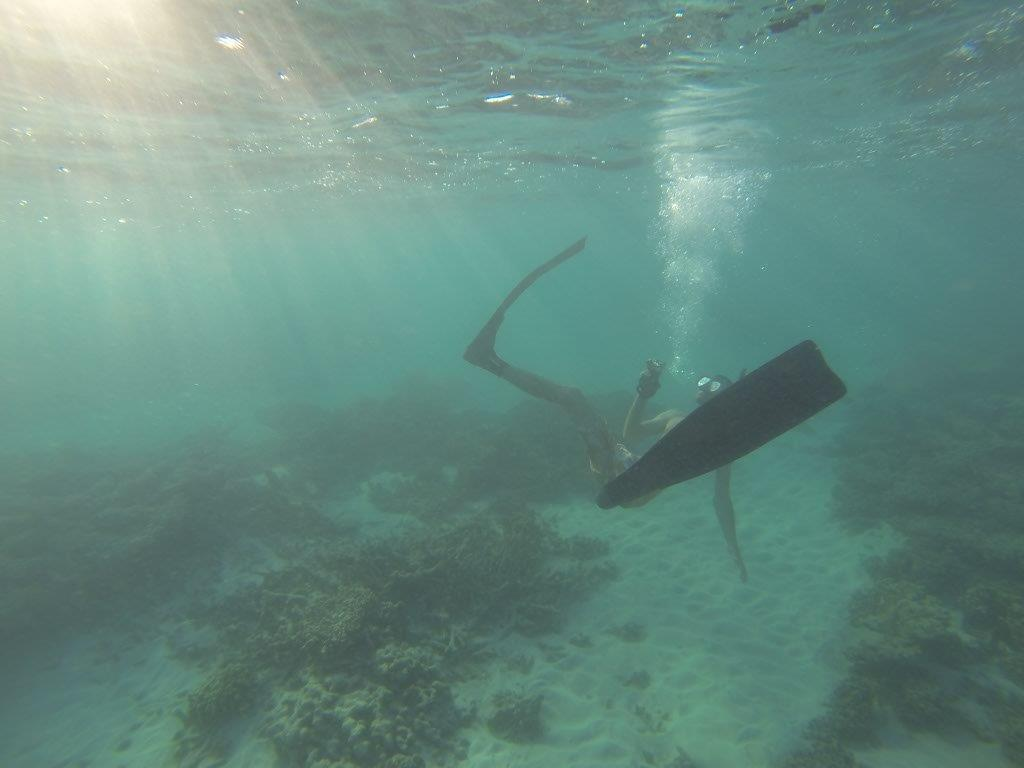Underwater Photography at Gnaraloo