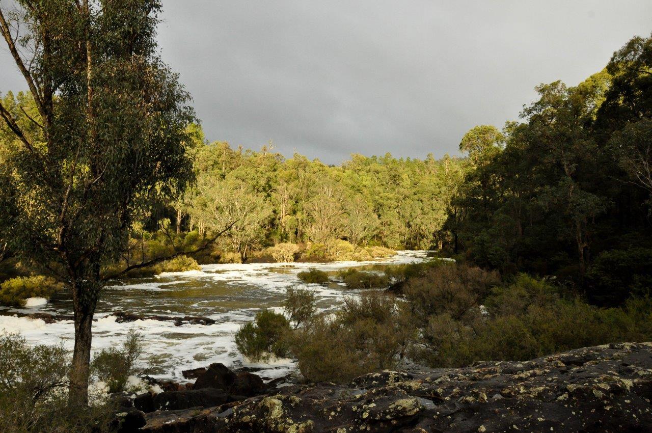 Dwellingup Rapids and Foam
