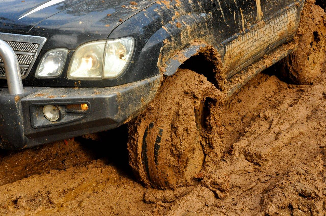 Feral Mud at Brunswick