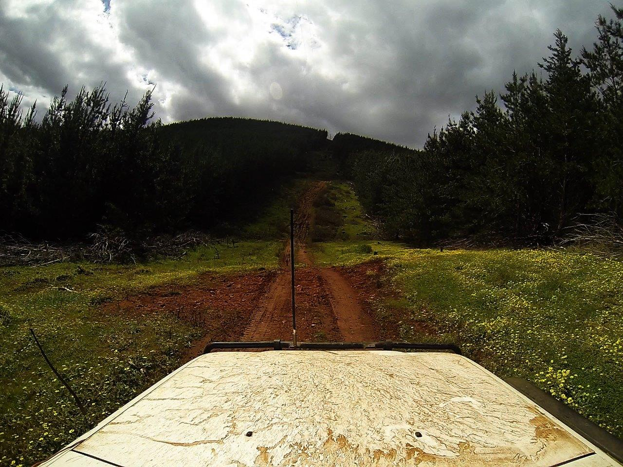 The Start of a Great 4wd Track