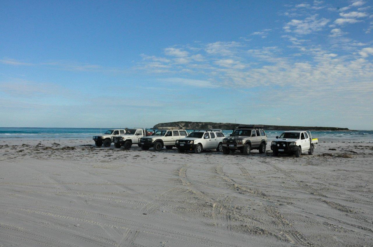 Wedge Island 4WD day trip