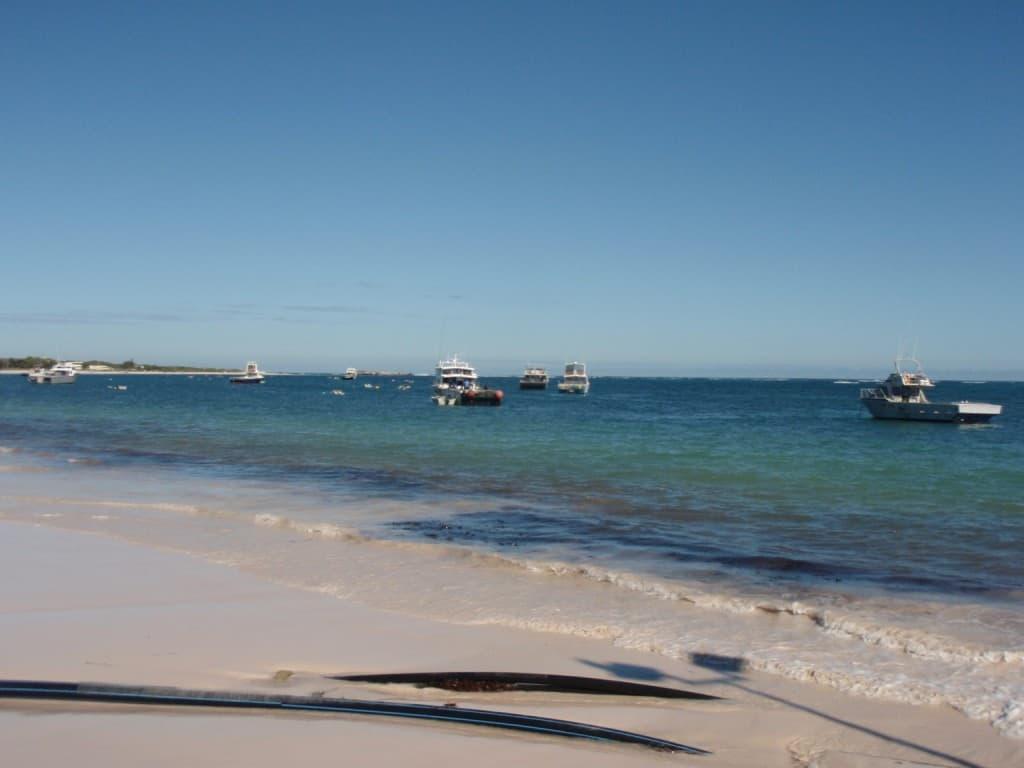 Lots of Rock Lobster Boats